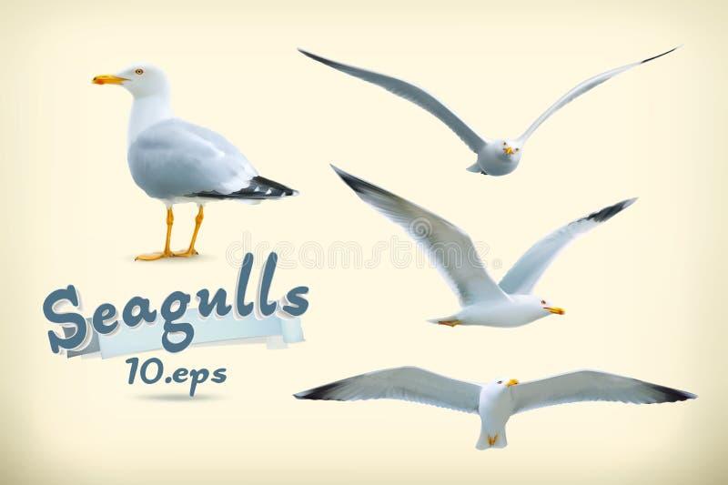Seagulls wektoru ikony ilustracja wektor