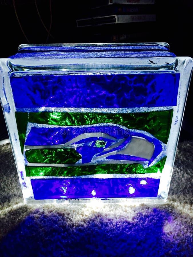 Seahawks zmroku lampowa chłodno wspaniała łuna zdjęcia stock