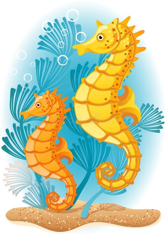 Seahorse illustrazione di stock