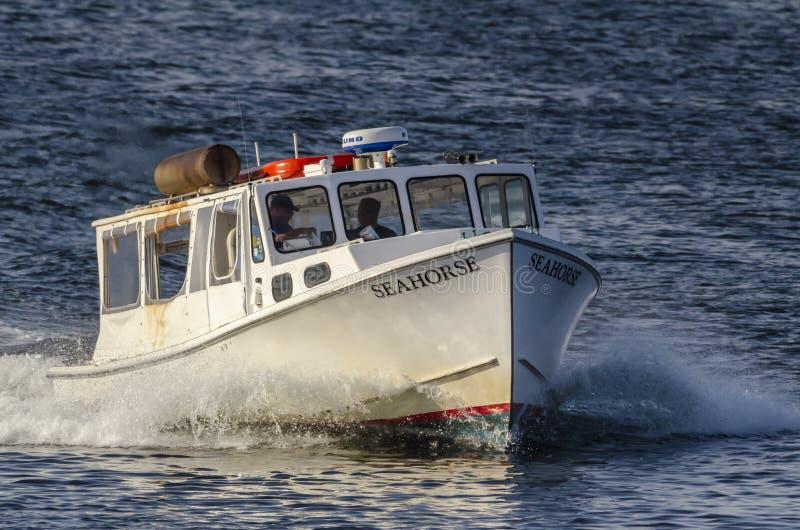 Seahorse del taxi del agua que cruza a través del puerto externo de New Bedford foto de archivo