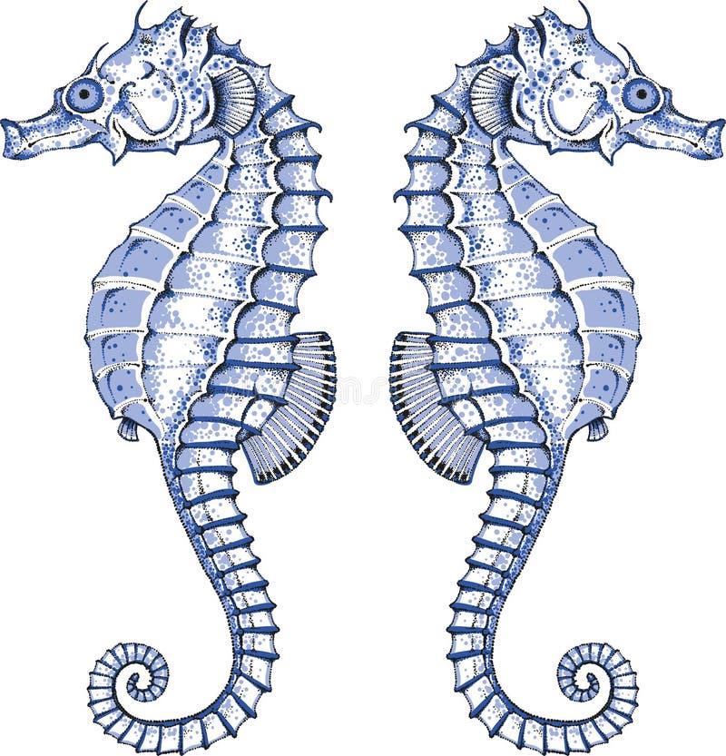 Seahorse gráfico ilustración del vector
