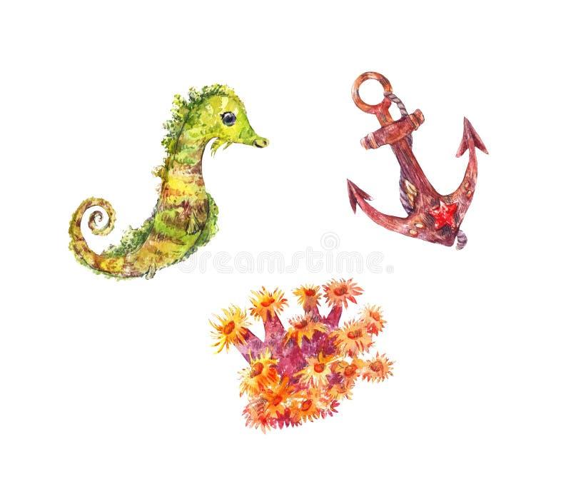 Seahorse, kotwica, anemonowa ilustracja Set akwareli morze el ilustracja wektor