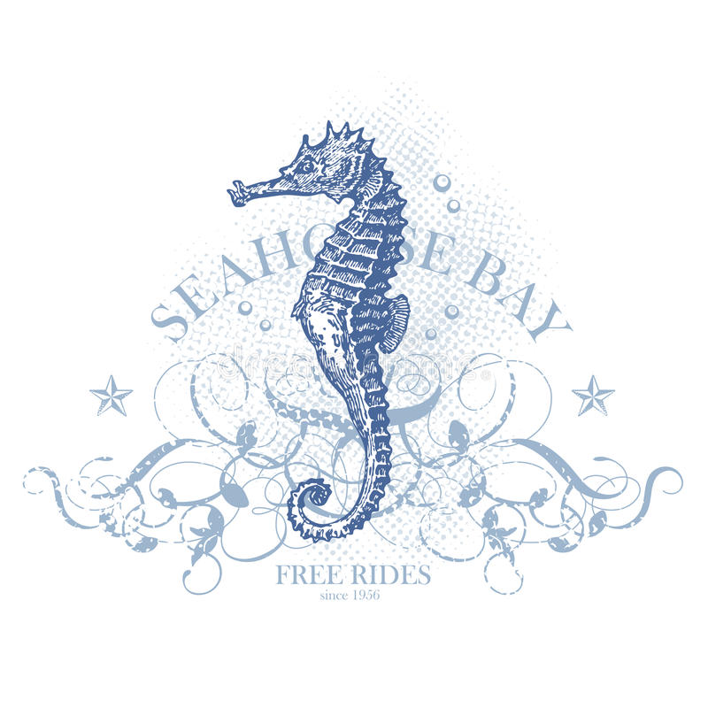 Free Seahorse Summer Design Element Stock Photography - 14632492