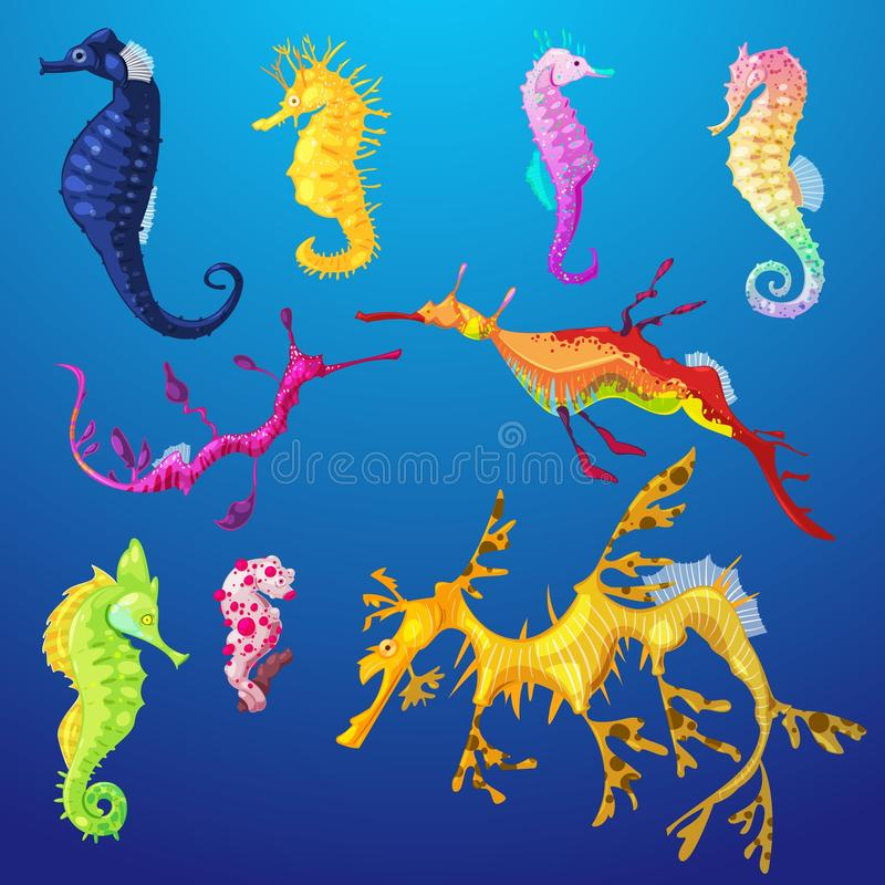 Seahorse vector seafish character or cartoon sea-horse undersea in tropical wildlife illustration set of exotic sea stock illustration