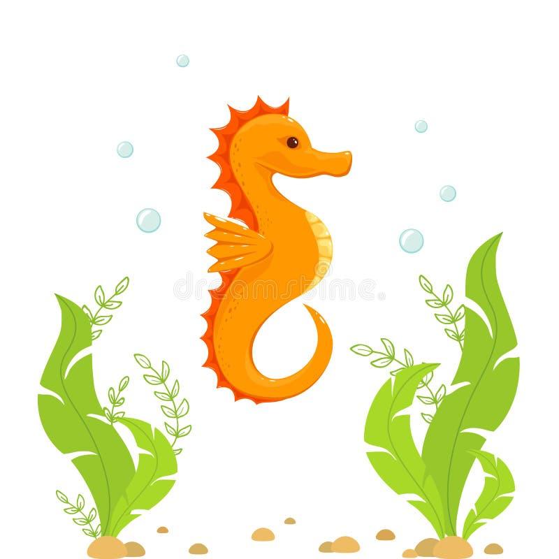 Seahorse y algas debajo del agua ilustración del vector