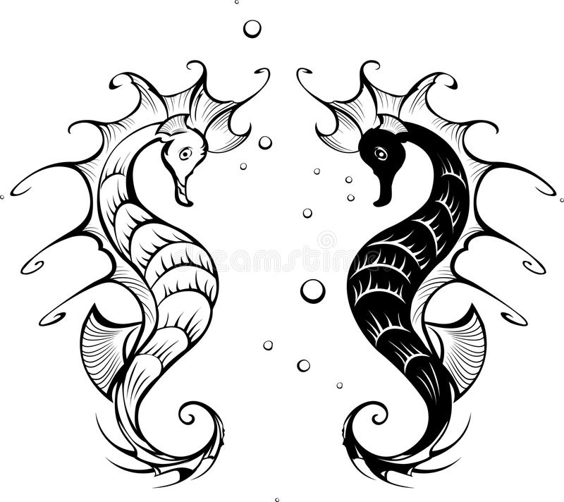 seahorses σκιαγραφίες απεικόνιση αποθεμάτων