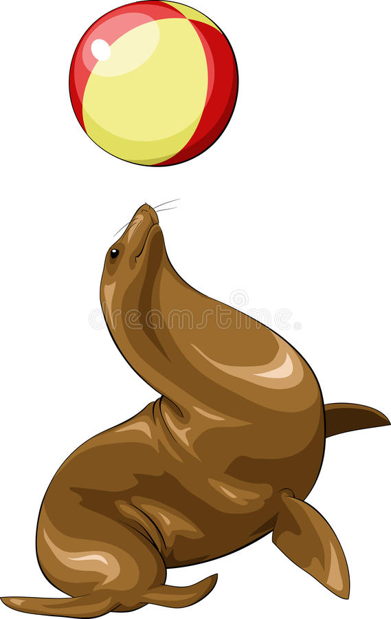 Download Seal stock vector. Image of play, image, cartoon, animal - 15877407