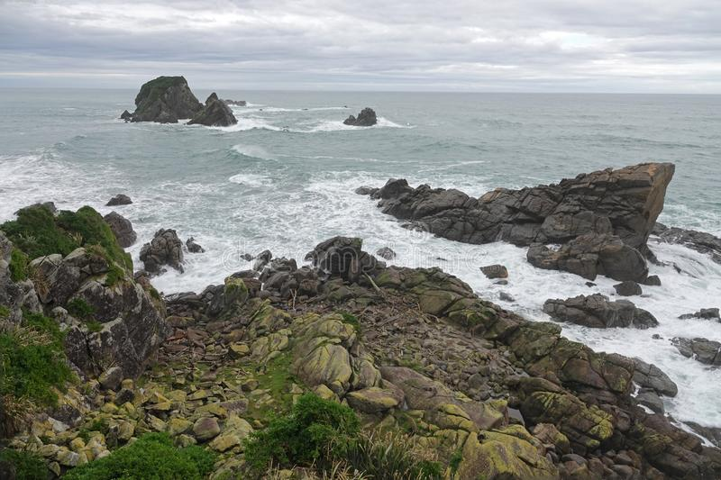 Cape Foulwind rocks and Tasman Sea on West Coast of New Zealand. Seal colony below on the rocks at Tasman Sea at Cape Foulwind on the West Coast of the South stock image