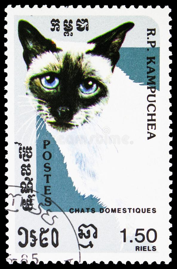 Seal-Point Siam Felis silvestris catus, Domestic cats serie, circa 1985. MOSCOW, RUSSIA - MAY 25, 2019: Postage stamp printed in Kampuchea Cambodia shows Seal stock photos