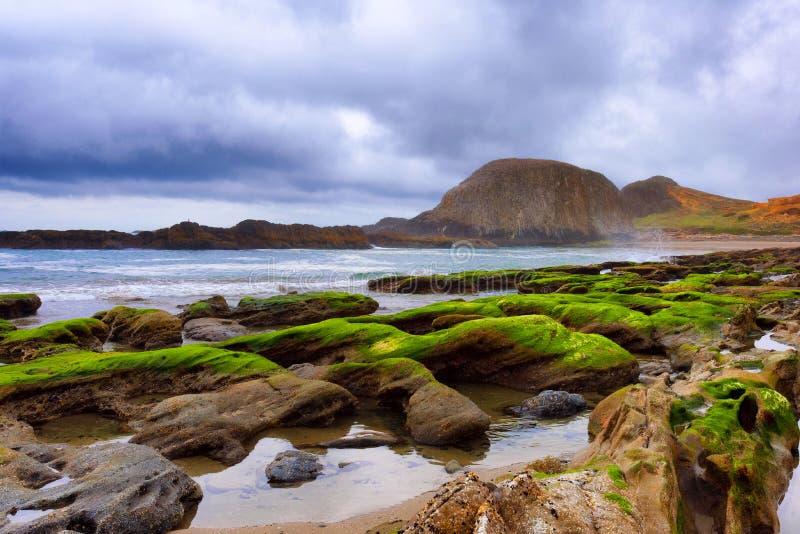 Seal Rock Beach on the Oregon Coast royalty free stock photo