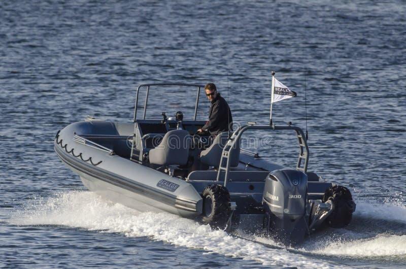 Sealegs 7 barco anfibio 7-meter que cruza el puerto externo de New Bedford fotos de archivo libres de regalías