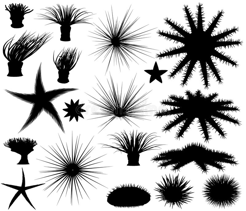 Sealife silhouettes. Set of editable vector silhouettes of sea lifeforms vector illustration