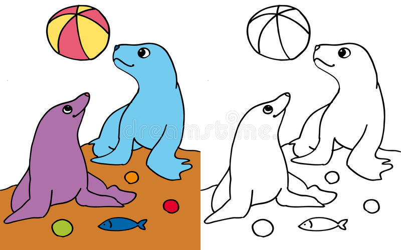 Seals Playing With Ball COLOR And BW Stock Illustration ...