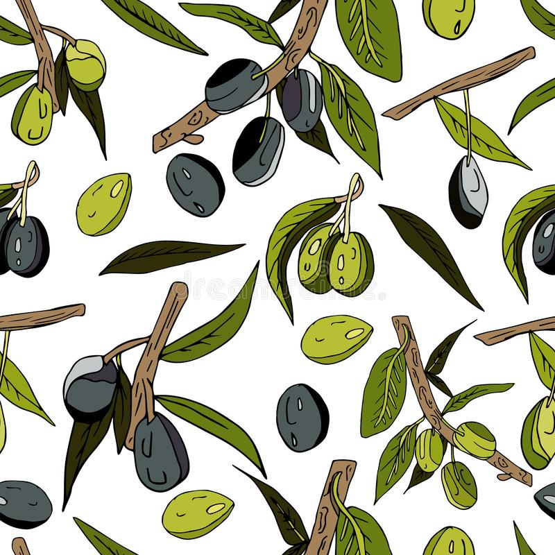 Seamless abstract pattern of olives, twigs, leaves and fruits on a white background. Decorative juicy print. black and green. Seamless abstract pattern of olives stock illustration