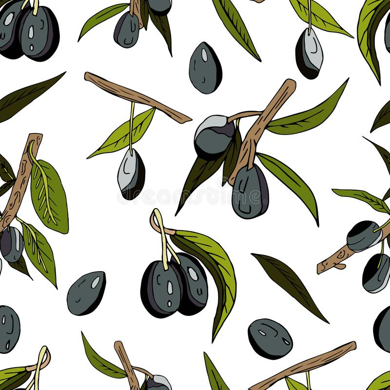 Seamless abstract pattern of olives, twigs, leaves and fruits on a white background. Decorative juicy print. Hand, drawn, green, italian, summer, vegetable vector illustration