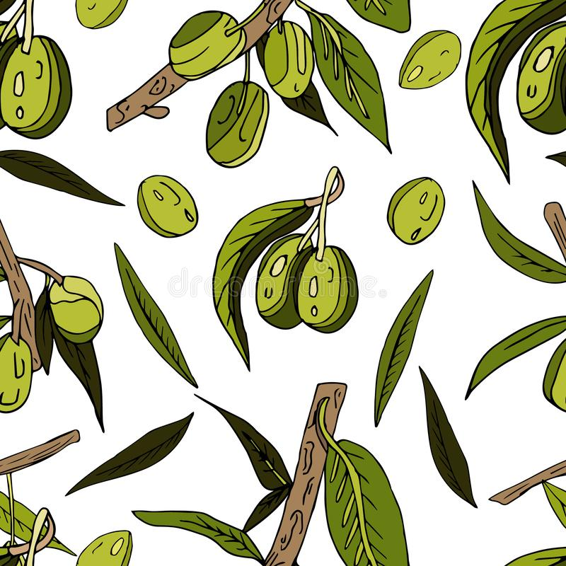Seamless abstract pattern of olives, twigs, leaves and fruits on a white background. Decorative juicy print. Hand, drawn, green, italian, summer, vegetable royalty free illustration