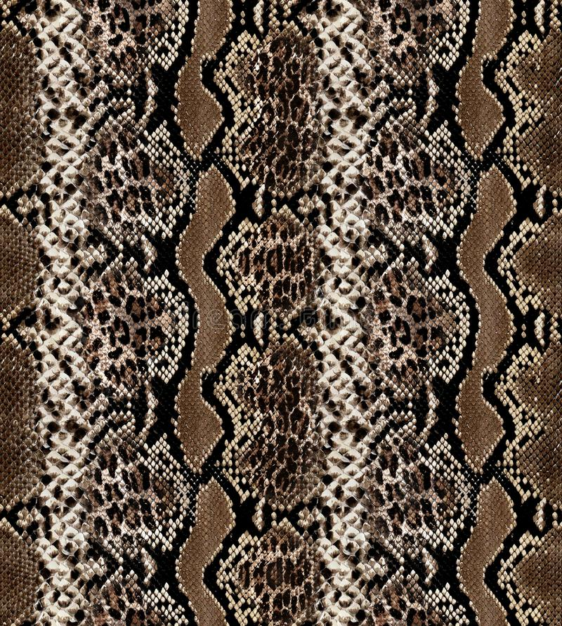 Seamless abstract pattern on a skin texture, snake. stock image