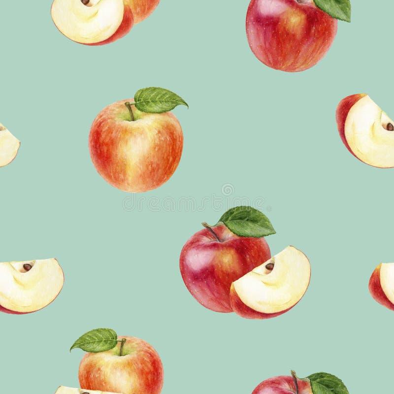 Apple fruit hand drawn watercolor illustration. Seamless pattern. Seamless apple fruit watercolor pattern. Hand drawn watercolor illustration royalty free illustration