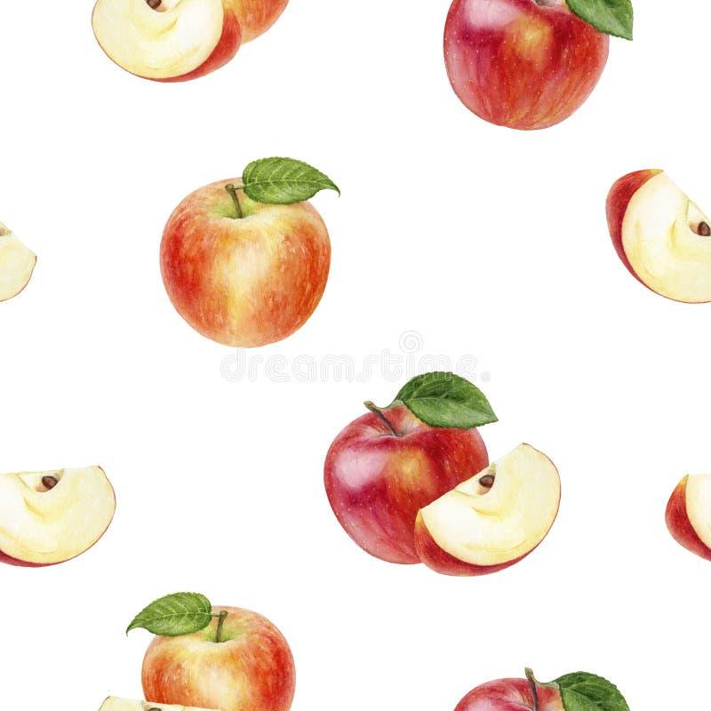 Apple fruit hand drawn watercolor illustration. Seamless pattern. Seamless apple fruit watercolor pattern. Hand drawn watercolor illustration stock illustration