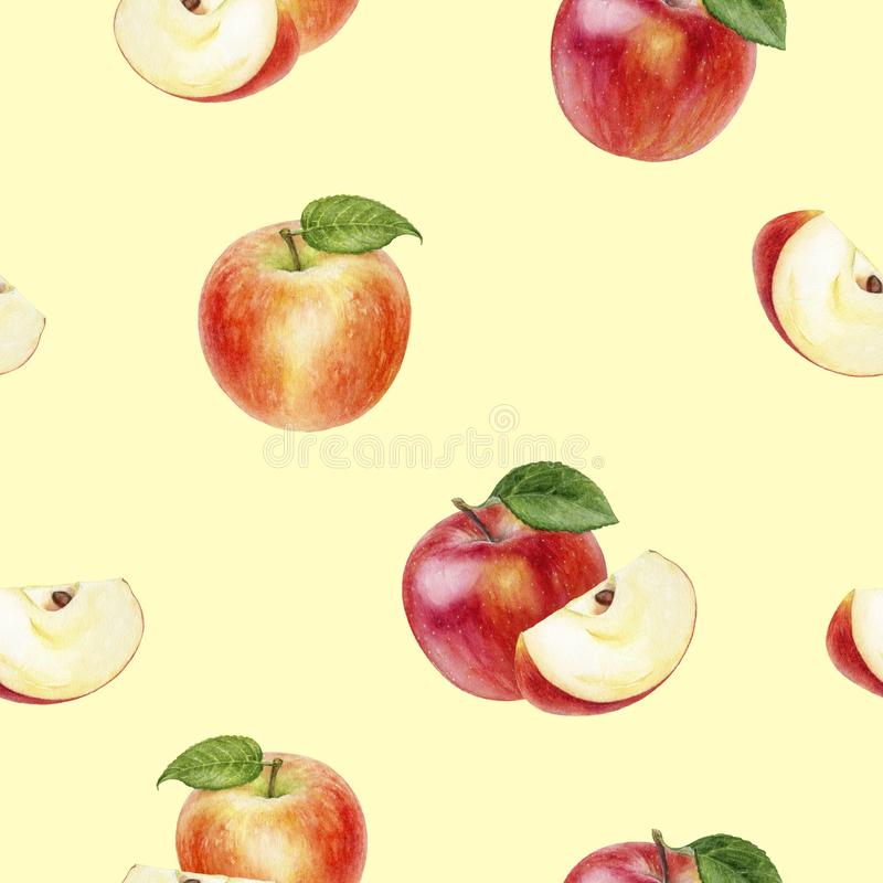 Apple fruit hand drawn watercolor illustration. Seamless pattern. Seamless apple fruit watercolor pattern. Hand drawn watercolor illustration vector illustration