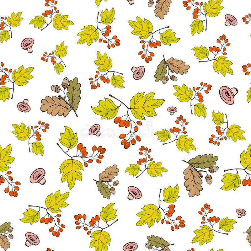 Seamless autumn background with falling acorns and branches with Crataegus berries vector illustration