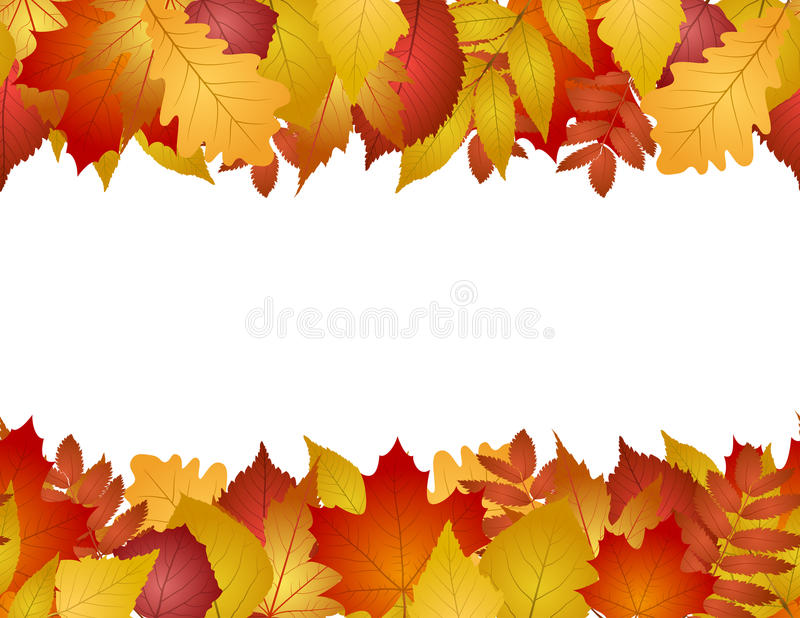 Seamless with autumn leaves vector illustration