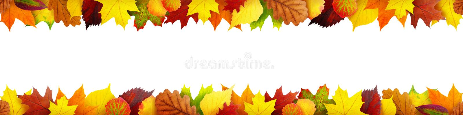 Seamless autumn leaves banner. With clipping path stock photos