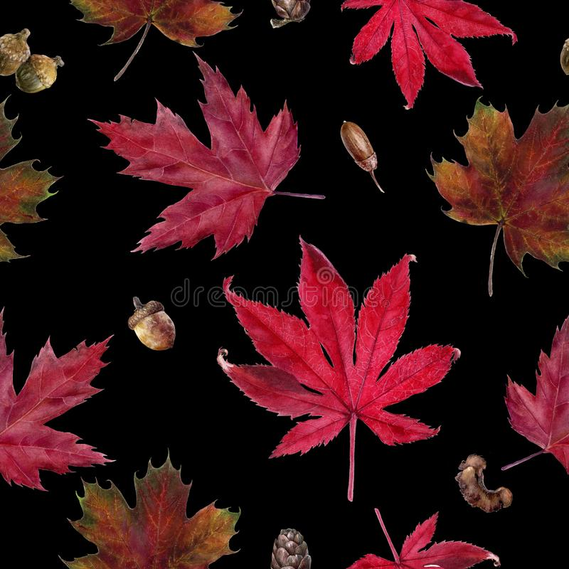 Watercolor hand drawn autumn leaf isolated seamless pattern. Seamless autumn pattern with autumn leaf maple, acorn, bark. Hand drawn watercolor illustration royalty free illustration