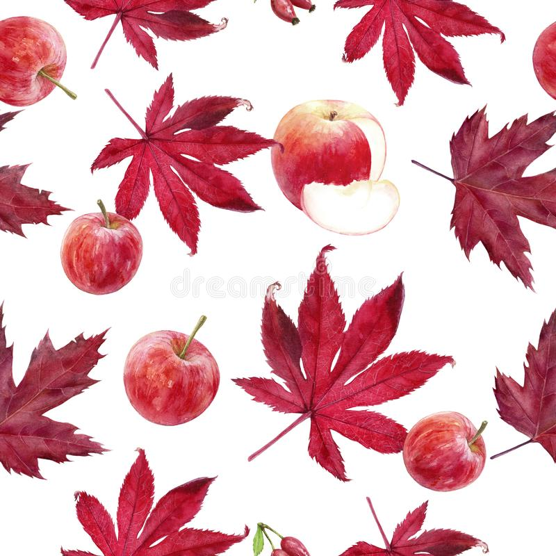 Watercolor hand drawn autumn leaf isolated seamless pattern. Seamless autumn pattern with autumn leaf maple, apples. Hand drawn watercolor illustration stock illustration