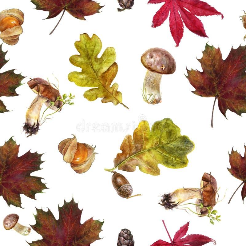 Watercolor hand drawn autumn leaf isolated seamless pattern. Seamless autumn pattern with autumn leaf maple, mushrooms, physalis, oak, acorn. Hand drawn stock illustration