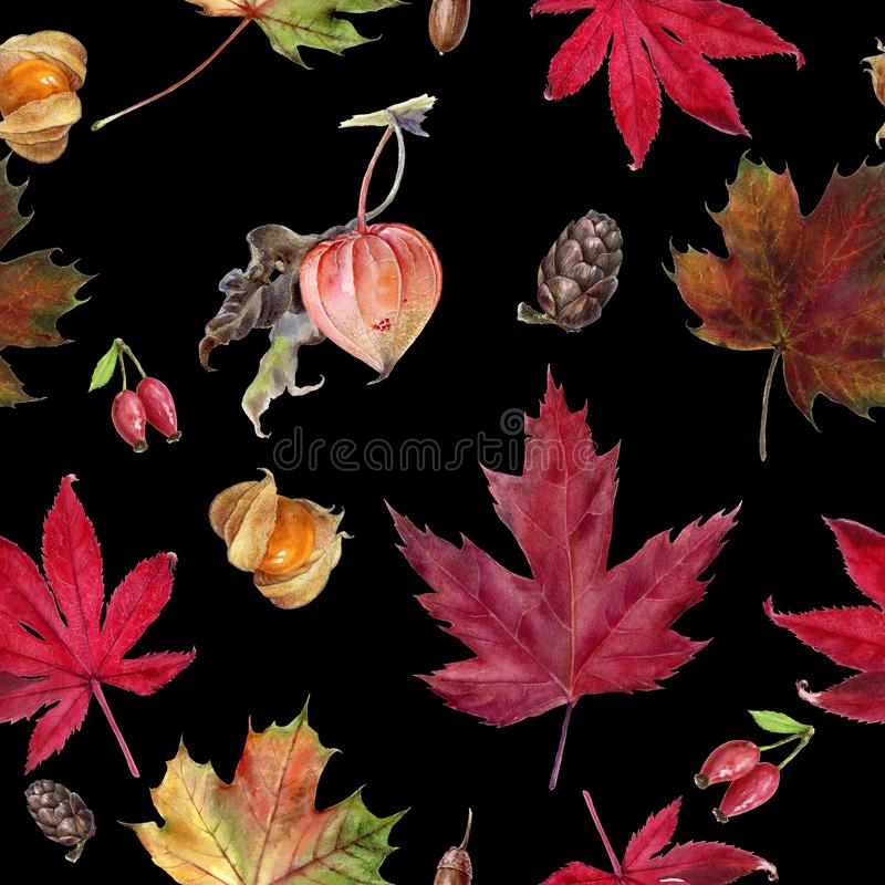 Watercolor hand drawn autumn leaf isolated seamless pattern. Seamless autumn pattern with autumn leaf maple, physalis, cone. Hand drawn watercolor illustration stock illustration