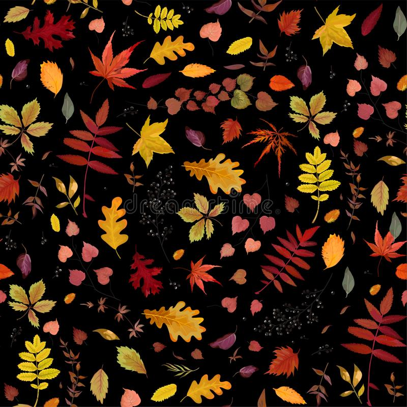 Seamless Autumn pattern Vector floral watercolor style design: o royalty free illustration