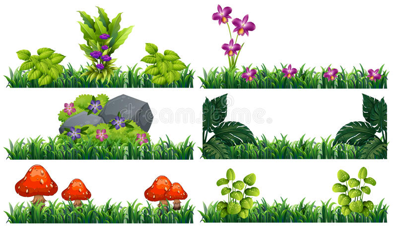 Seamless background with flowers in garden royalty free illustration