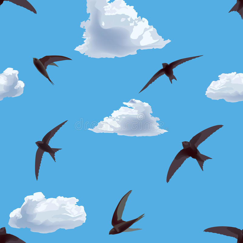 Seamless background with flying swifts in the sky vector illustration