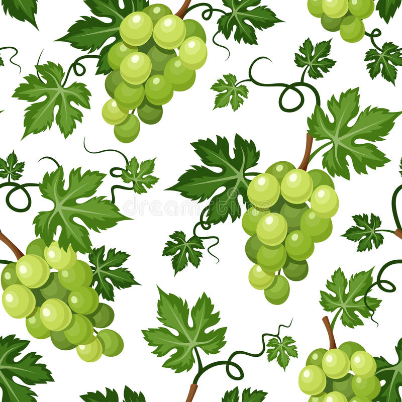Seamless background with green grapes. Vector illustration. stock illustration