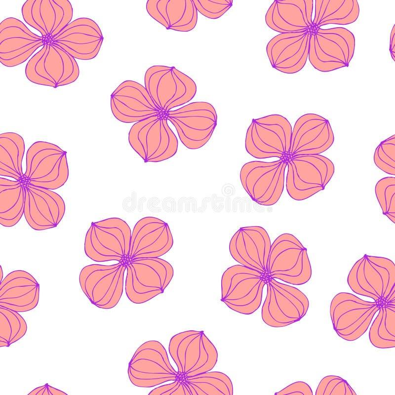 Seamless background image colorful botanic flower plant pink dogwood Cornus. On white vector illustration