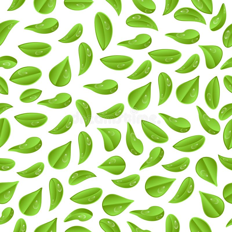 Seamless background.Leaves with water droplets on a white background royalty free illustration