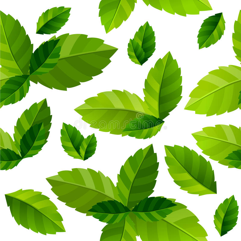 Download Seamless Background Mint Leaves Stock Vector - Image: 17303956