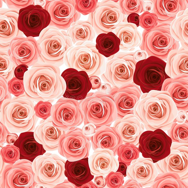 Seamless background with pink and burgundy roses. Vector illustration. stock illustration