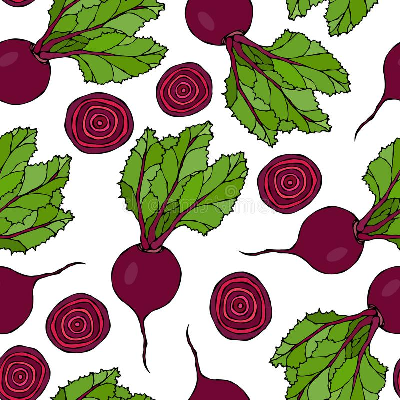 Seamless Background of Ripe Beets. Endless Pattern of Beetroot with Top Leaves, Beet Halves and Cut Round Slices. Fresh Vegetable. Salad. Hand Drawn Vector stock illustration