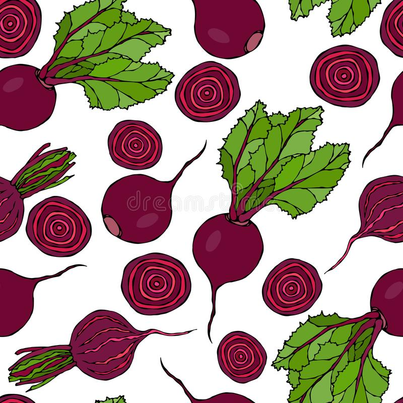 Seamless Background of Ripe Beets. Endless Pattern of Beetroot with Top Leaves, Beet Halves and Cut Round Slices. Fresh Vegetable. Salad. Hand Drawn Vector vector illustration