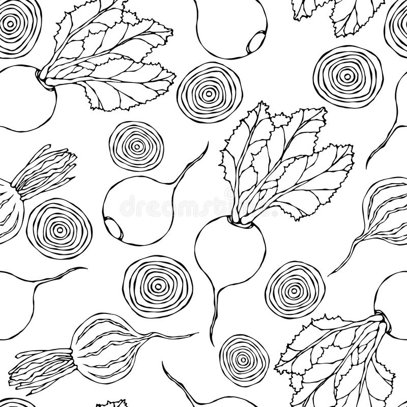 Seamless Background of Ripe Beets. Endless Pattern of Beetroot with Top Leaves, Beet Halves and Cut Round Slices. Fresh Vegetable. Salad. Hand Drawn Vector royalty free illustration