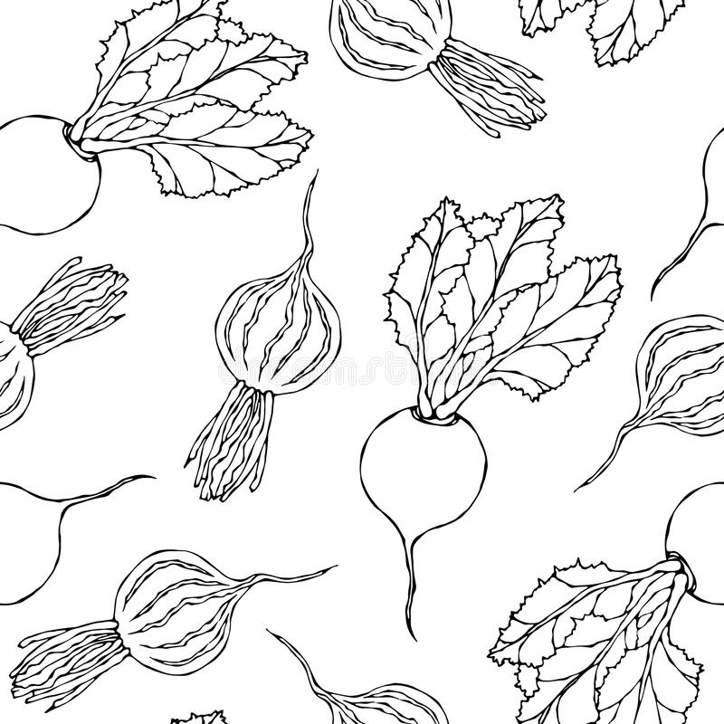 Seamless Background of Ripe Beets. Endless Pattern of Beetroot with Top Leaves and Beet Halves. Fresh Vegetable Salad. Hand Drawn. Vector Illustration. Savoyar vector illustration