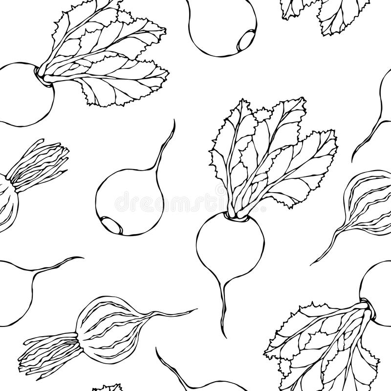 Seamless Background of Ripe Beets. Endless Pattern of Beetroot with Top Leaves and Beet Halves. Fresh Vegetable Salad. Hand Drawn. Vector Illustration. Savoyar stock illustration