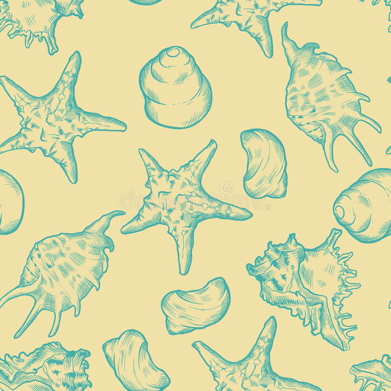 Download Seamless Background With Shells. Hand Drawn Stock Image - Image of ornament, marine: 51065761