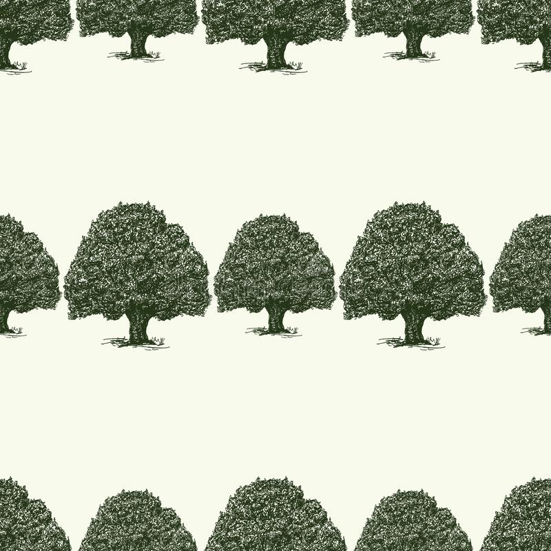 Seamless background of sketches of old oak trees royalty free illustration
