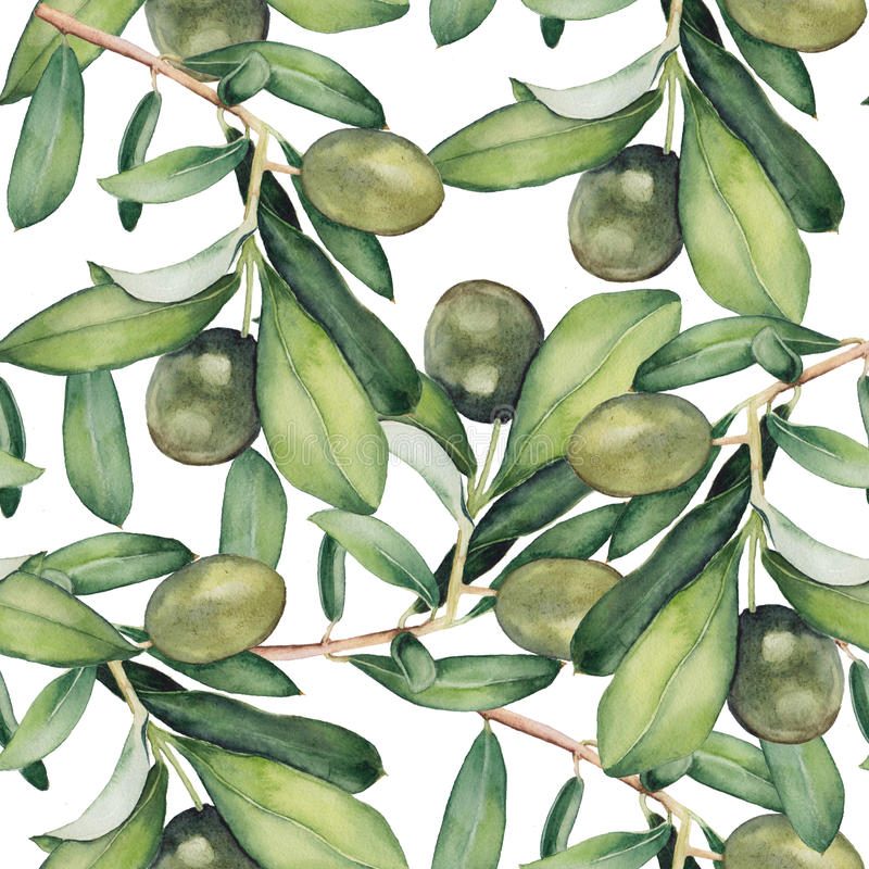 Free Seamless Background With Green Olive Branches Stock Photo - 60154430