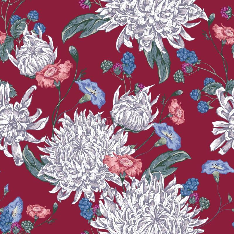 seamless bakgrundschrysanthemums vektor illustrationer