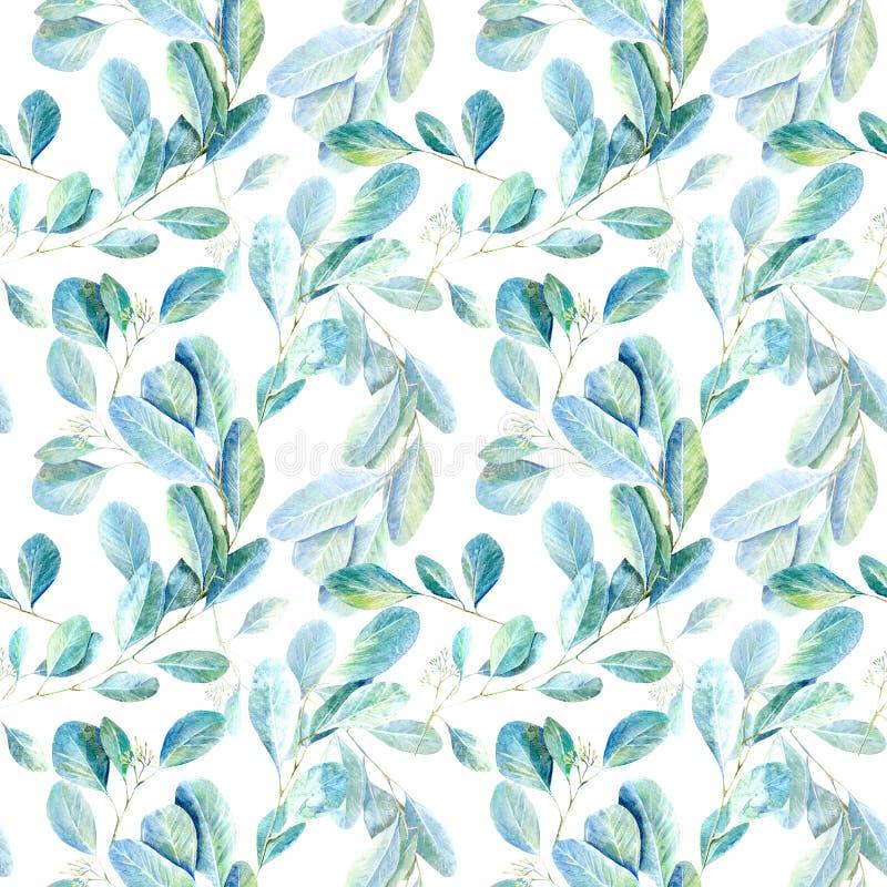 seamless blom- modell Eukalyptusfilialer Avbilda för tyg, papper och andra printing och rengöringsdukprojekt royaltyfri illustrationer