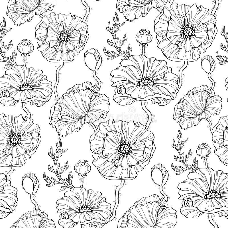 seamless blommamodellvallmo vektor för detaljerad teckning för bakgrund blom- Svartvit illustration vektor illustrationer
